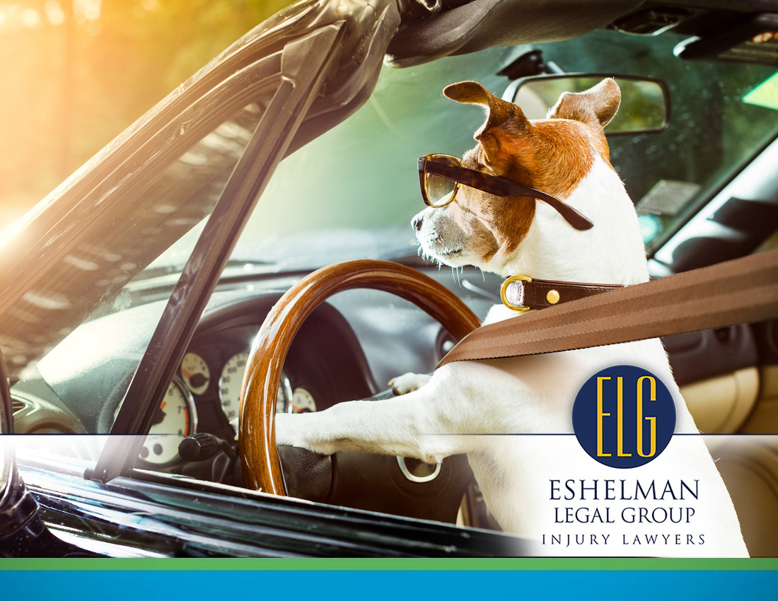 Safety Belts | Personal Injury Lawyers Ohio, ELG